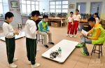 「機械人對抗比賽」(Robotics Sumo):學生對智慧型機械人編寫程式,在比賽中鬥智鬥勇爭取勝利。